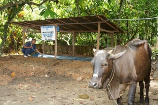 PT Kerasaan Indonesia - A Biogas Project for Villagers